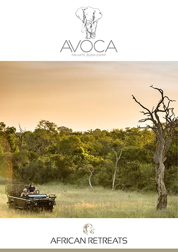 Avoca Bush Camp