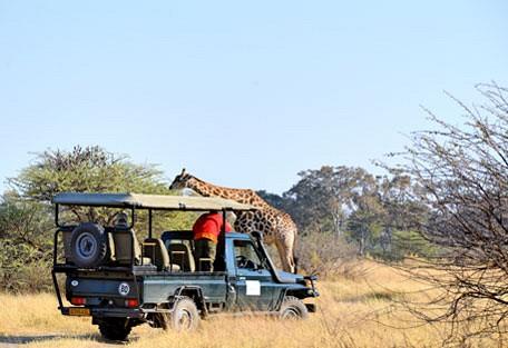 afrika-ecco-safari-experience2.jpg