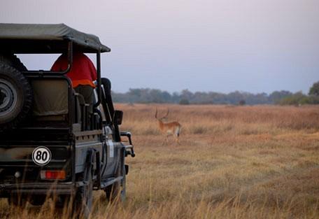 afrika-ecco-safari-experience3.jpg