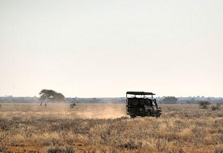 afrika-ecco-safari-experience6.jpg