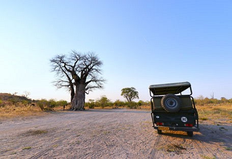 afrika-ecco-safari-experience7.jpg
