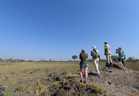 afrika-ecco-safari-experience9.jpg