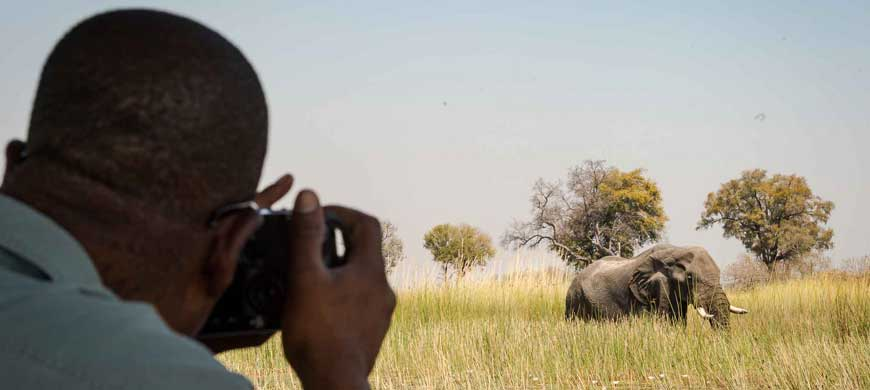 afrika-ecco-safaris-wide1.jpg