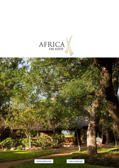 Africa on Foot Wetu Online Brochure