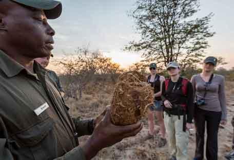 456-africa-on-foot-safari-experience4.jpg
