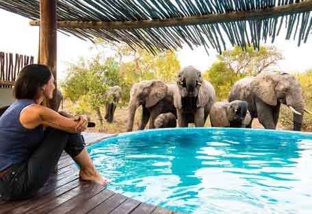 456-africa-on-foot-safari-experience5.jpg