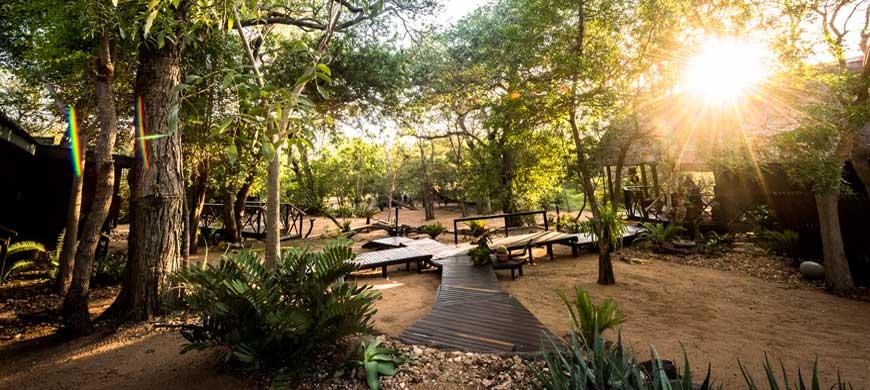 Avoca-bush-camp-cover-wide1.jpg