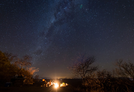 2-safari-experience-stars.jpg