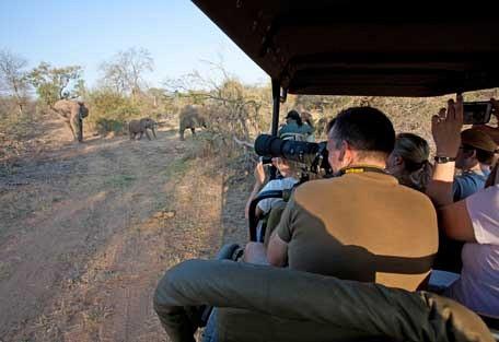 456-ezulwini-billys-lodge-safari-experience2.jpg