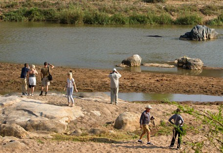 456-ezulwini-billys-lodge-safari-experience5.jpg