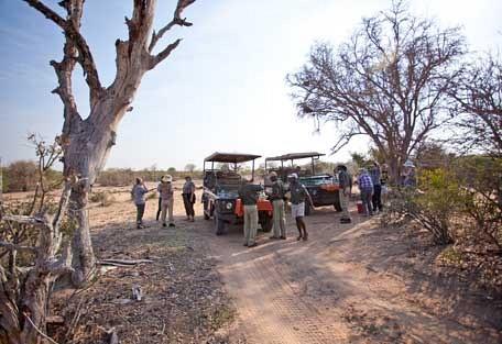 456-ezulwini-billys-lodge-safari-experience3.jpg