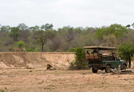 456-ezulwini-billys-lodge-safari-experience4.jpg