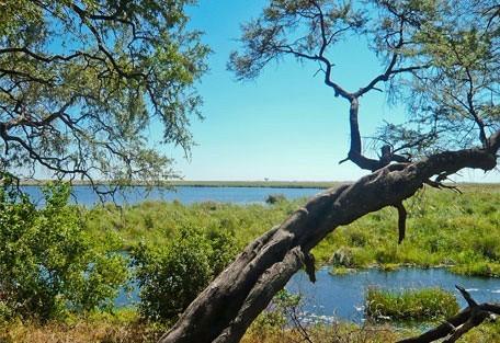 456_camplinyanti_river.jpg