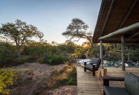 456-safari-experience2.jpg