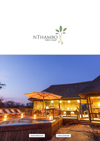 nThambo Tree Camp Wetu Online Brochure