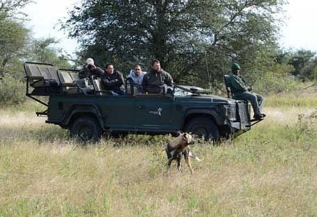 456-nThambo-Tree-Camp-safari-experience3.jpg