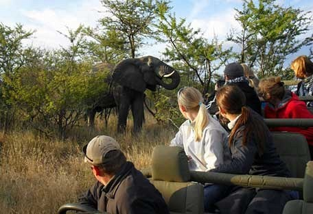 456-nThambo-Tree-Camp-safari-experience4.jpg