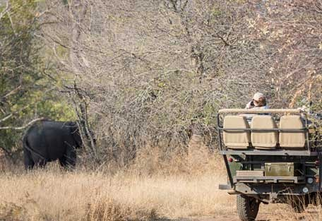 456-nThambo-Tree-Camp-safari-experience5.jpg