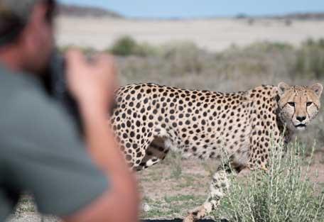 safari-experience-gallery2.jpg
