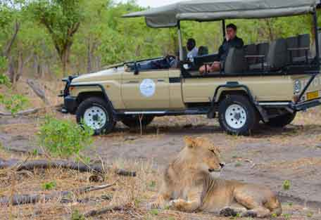 camp-savuti-safari-7.jpg