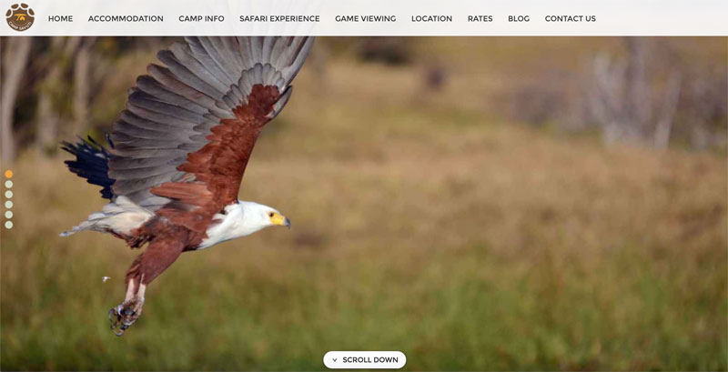 Camp Savuti Website