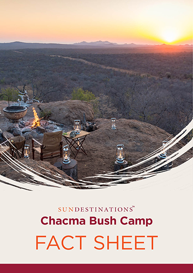 Chacma Bush Camp Fact Sheet