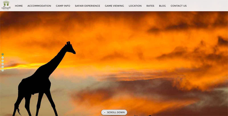 nDzuti Safari Camp Website