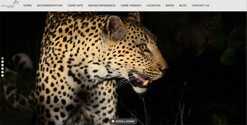 nThambo Tree Camp Website