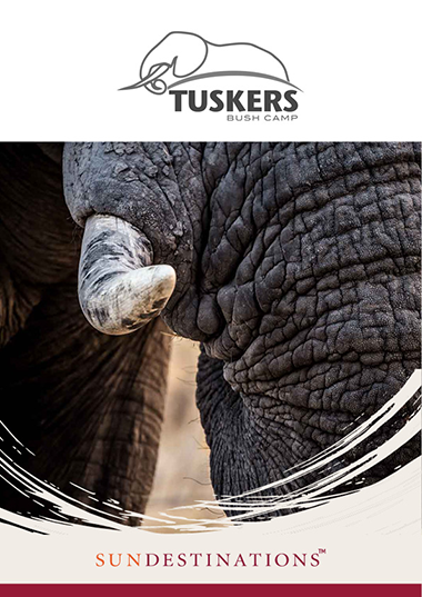 Tuskers Bush Camp Wetu Online Brochure