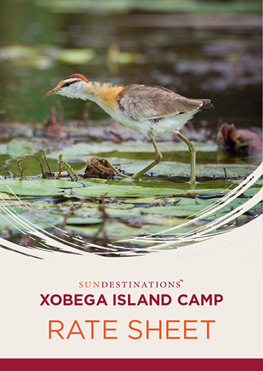 Xobega Island Camp Rates