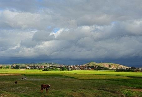 456_antananarivo_ricepaddie.jpg