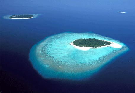 456a_maldives.jpg