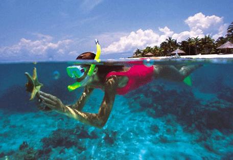 456i_maldives.jpg