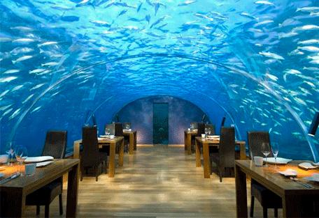 456l_conrad-maldives_underwater-restaurant.jpg