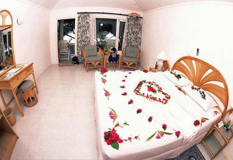 456c_paradise-island_bedroom.jpg