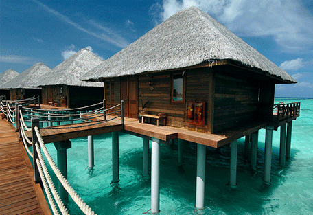 456a_vilu-reef-beach_honeymoon-water-villa.jpg