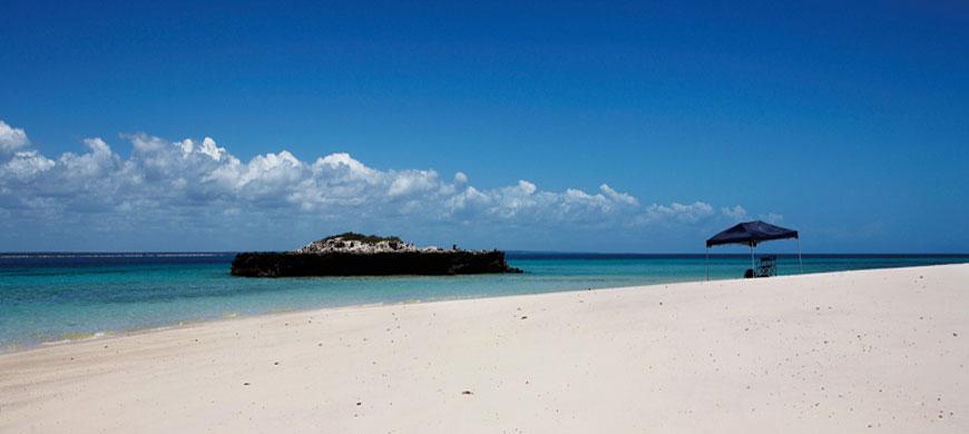 Paradise_Island_Picnic_Wide.jpg
