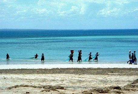 456_pemba_fishing.jpg