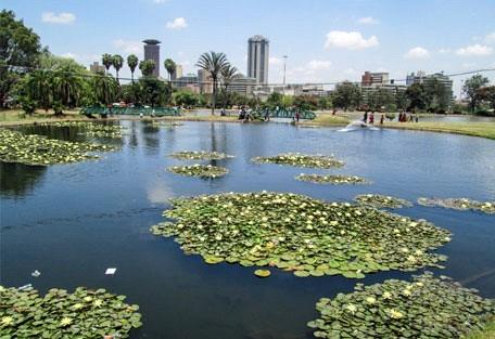 456_nairobi_pond.jpg