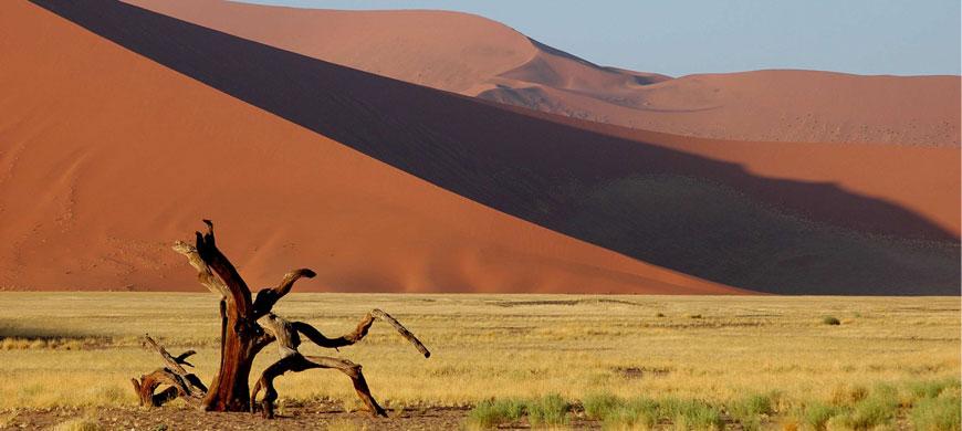 870_luderitznest_dunes.jpg
