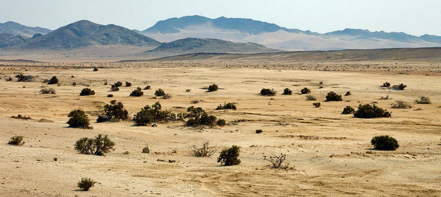 870_burningshore_desert.jpg