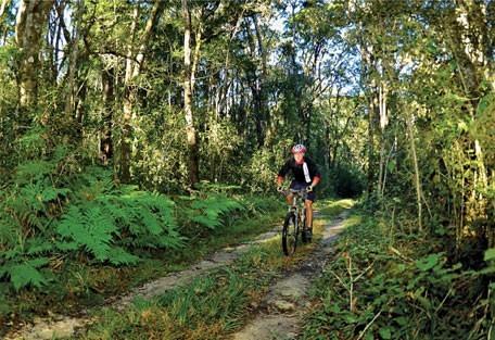 456_gardenroute_cycling.jpg
