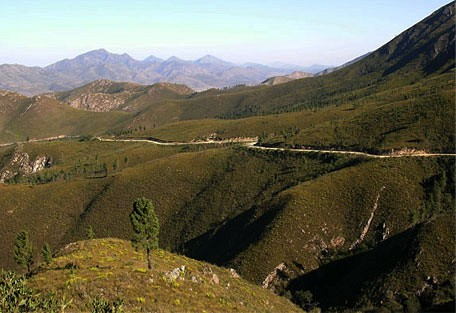 456_gardenroute_mountains.jpg
