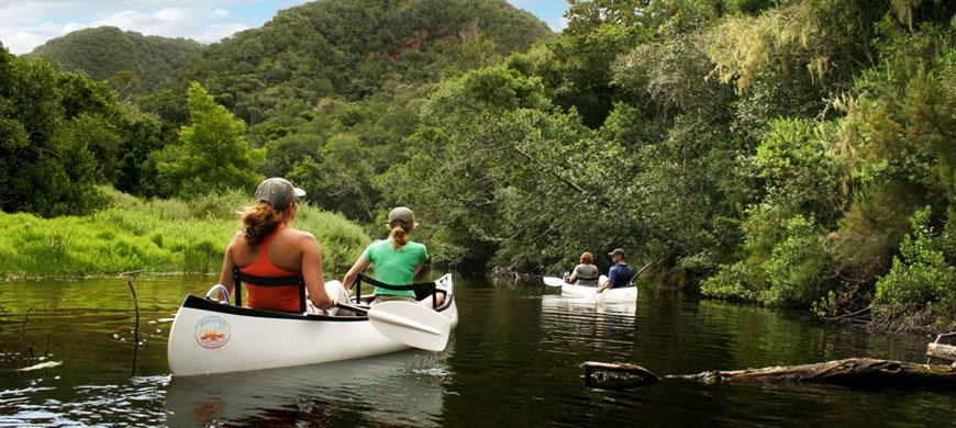 870_pezula_canoe.jpg