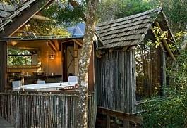456a_phantomforest_treehouse.jpg