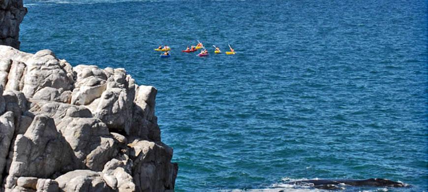 870_oceaneleven_kayak.jpg
