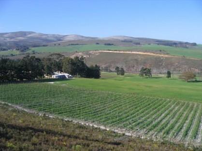 04-wine-farm.jpg