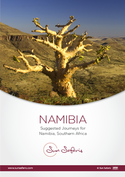 Namibia Journeys