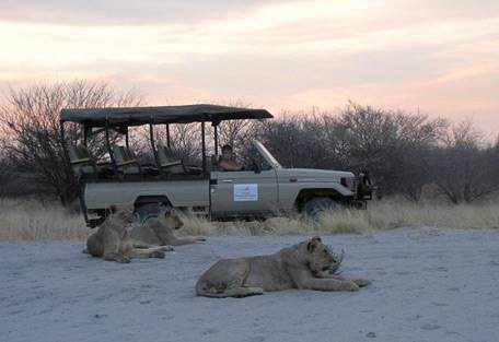 sunsafaris-4-haina-kalahari-lodge.jpg