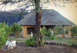 456a_tilodi-safari-lodge_exterior.jpg